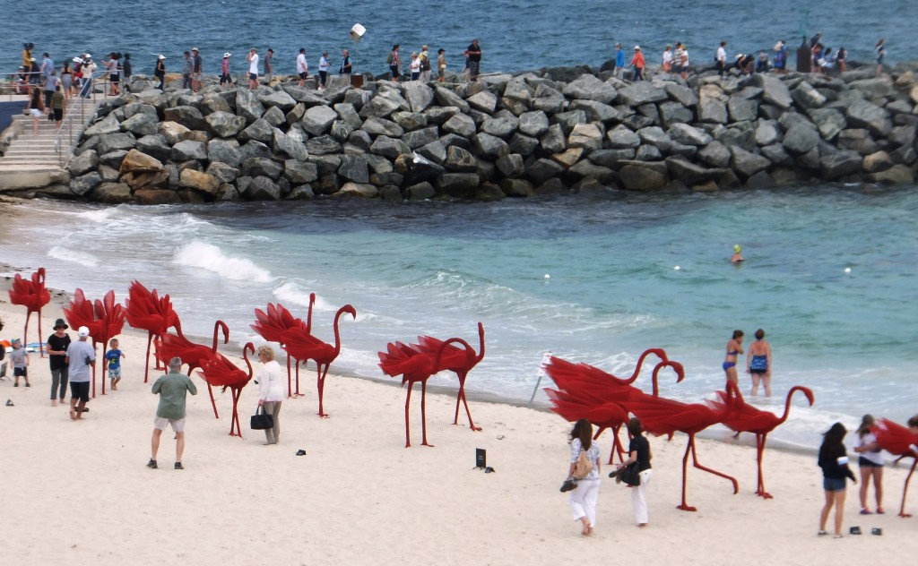 Flamingos and people at Cottesloe Beach 2015